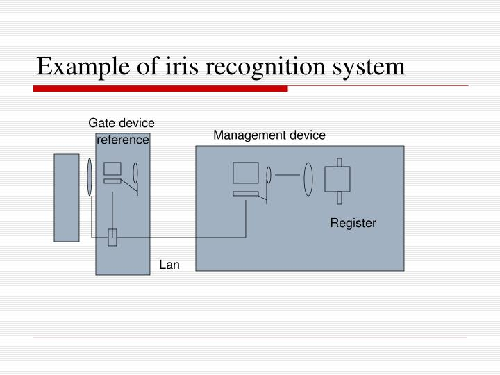 Example of iris recognition system