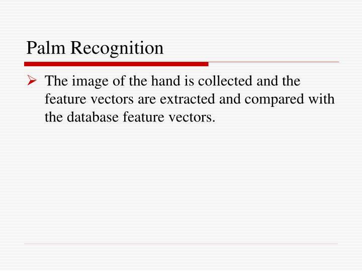 Palm Recognition