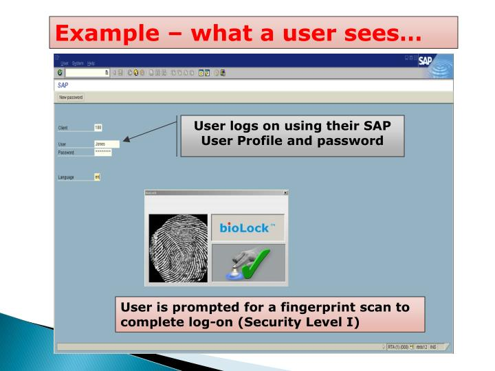 User is prompted for a fingerprint scan to complete log-on (Security Level I)