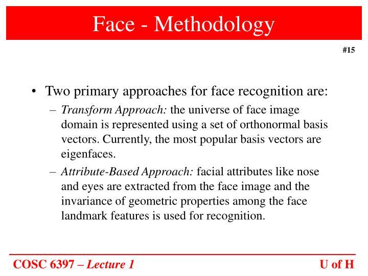 Face - Methodology