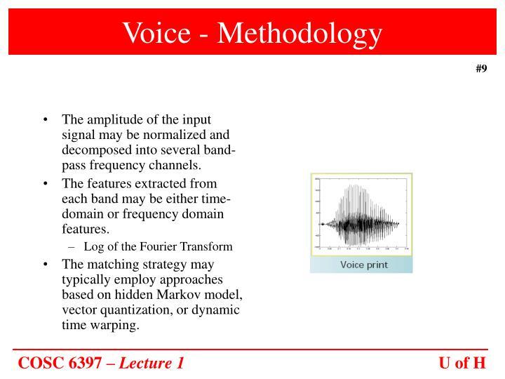 Voice - Methodology