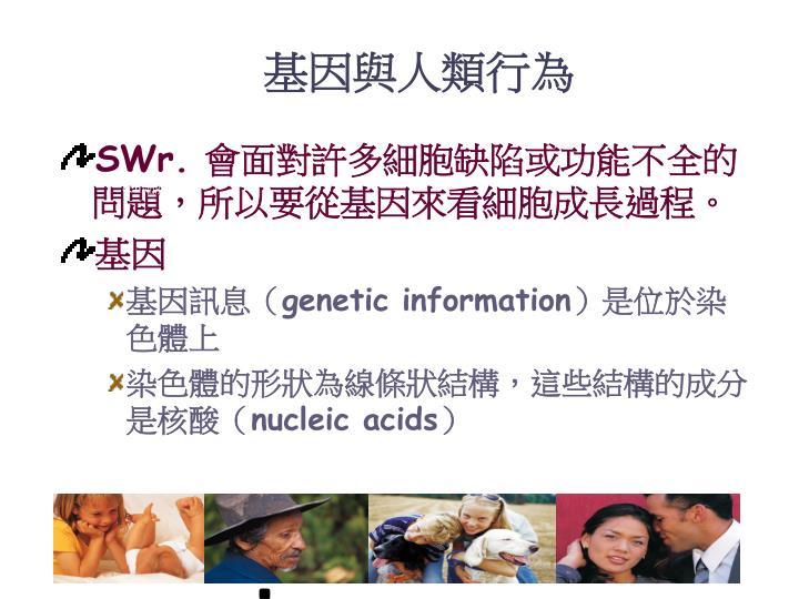 基因與人類行為