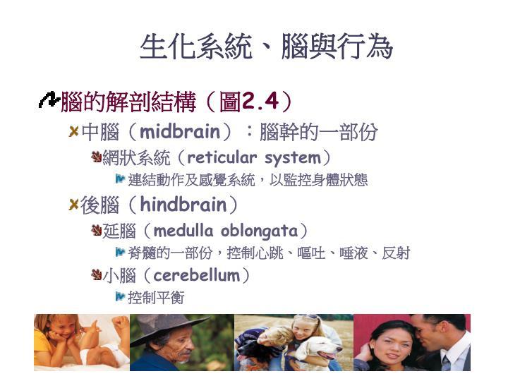 生化系統、腦與行為