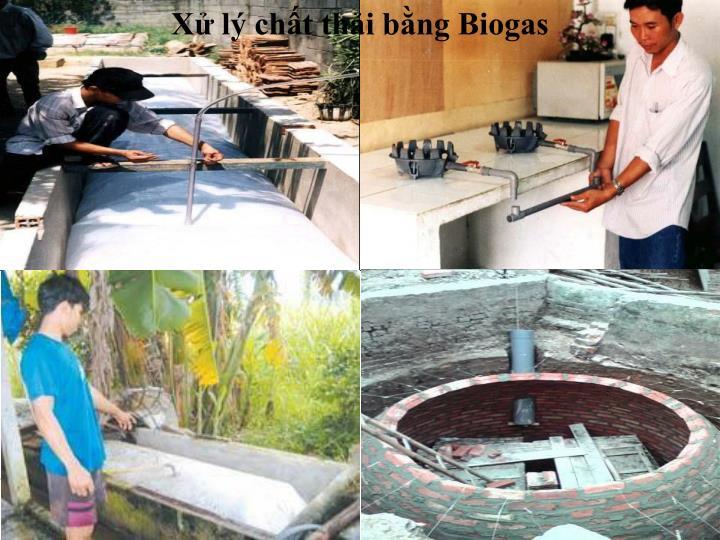 Xử lý chất thải bằng Biogas