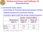 medium term issues and challenges 8 financial sector