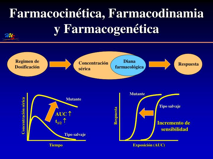 Farmacocinética, Farmacodinamia