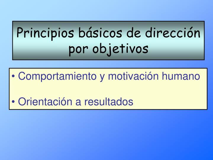 Principios básicos de dirección por objetivos
