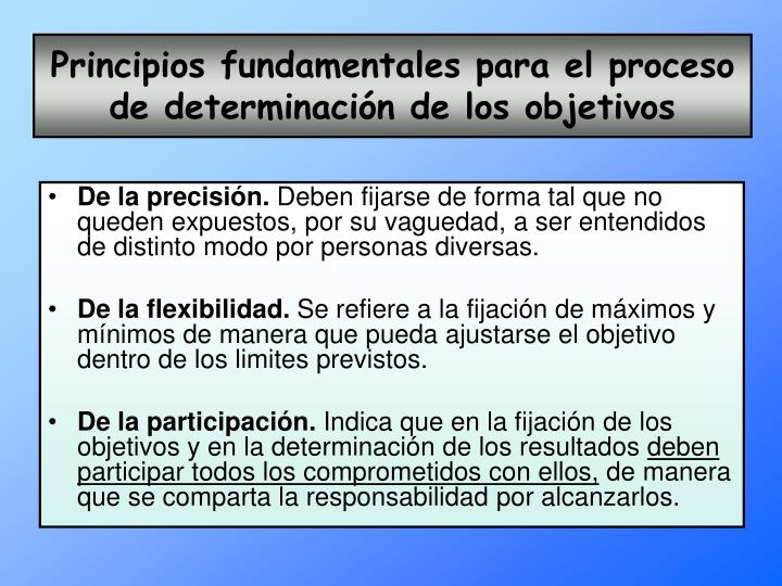 Principios fundamentales para el proceso de determinación de los objetivos