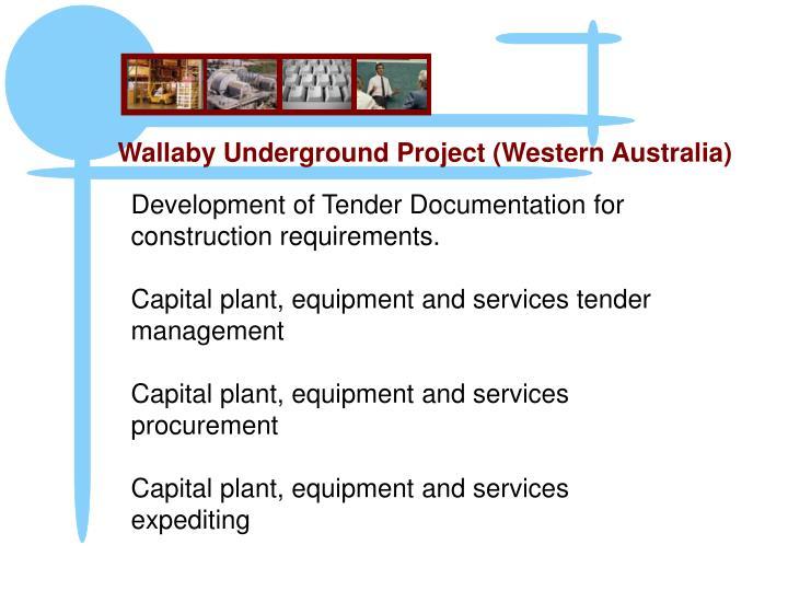 Wallaby Underground Project (Western Australia)
