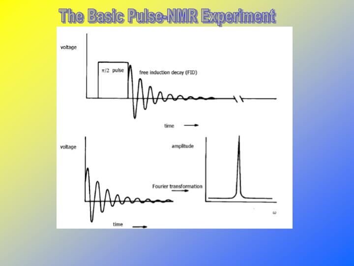 The Basic Pulse-NMR Experiment