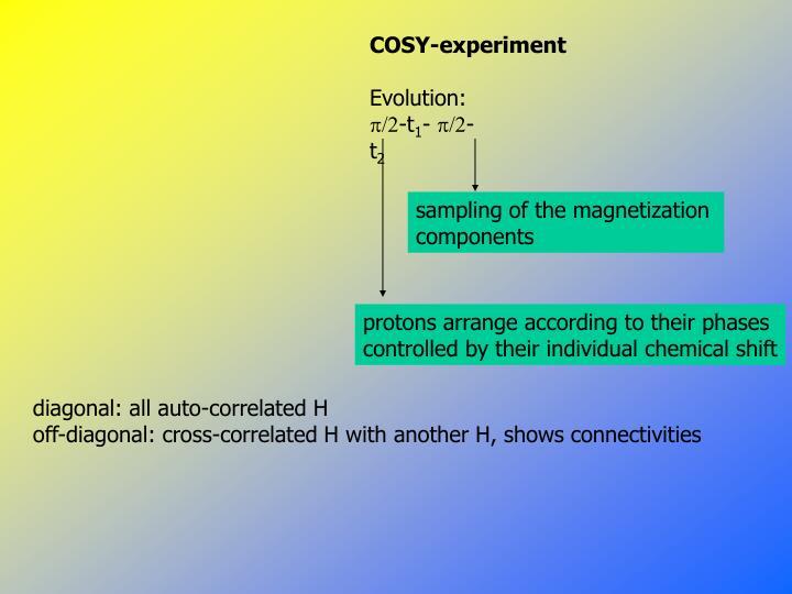 sampling of the magnetization