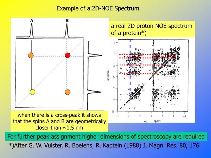 Example of a 2D-NOE Spectrum