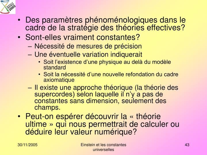 Des paramètres phénoménologiques dans le cadre de la stratégie des théories effectives?