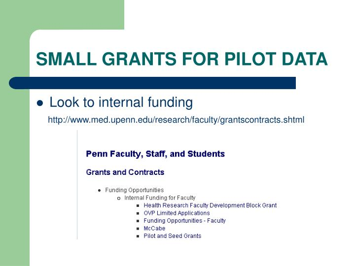 SMALL GRANTS FOR PILOT DATA