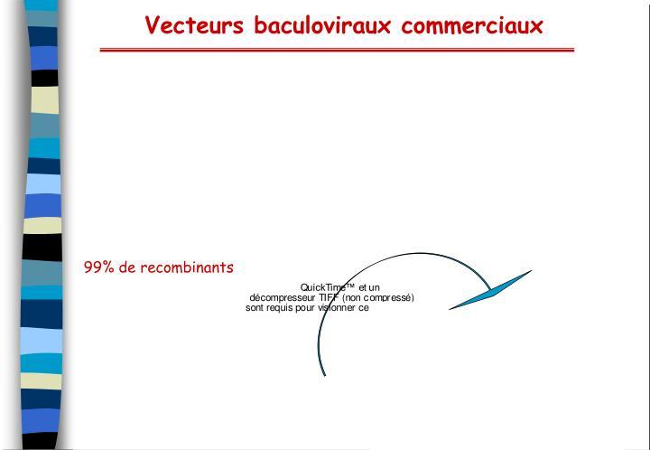 99% de recombinants