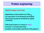 protein engineering10