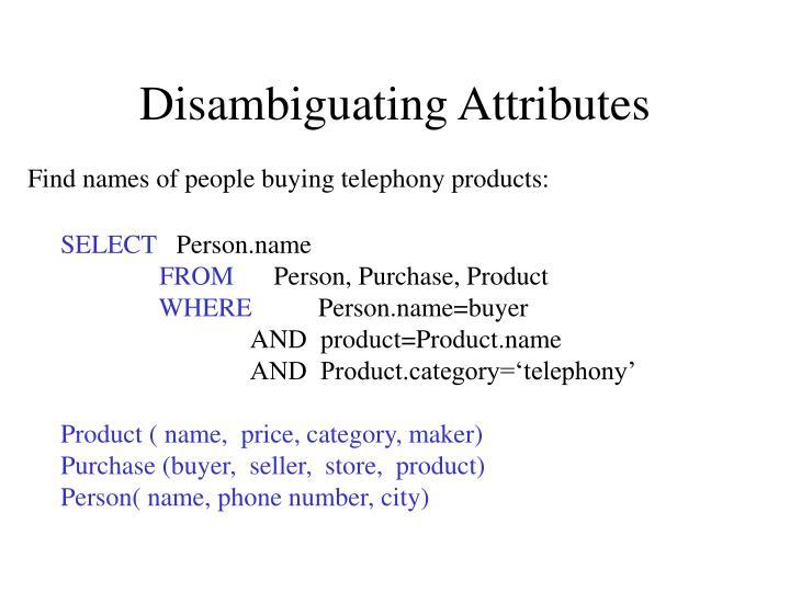 Disambiguating Attributes
