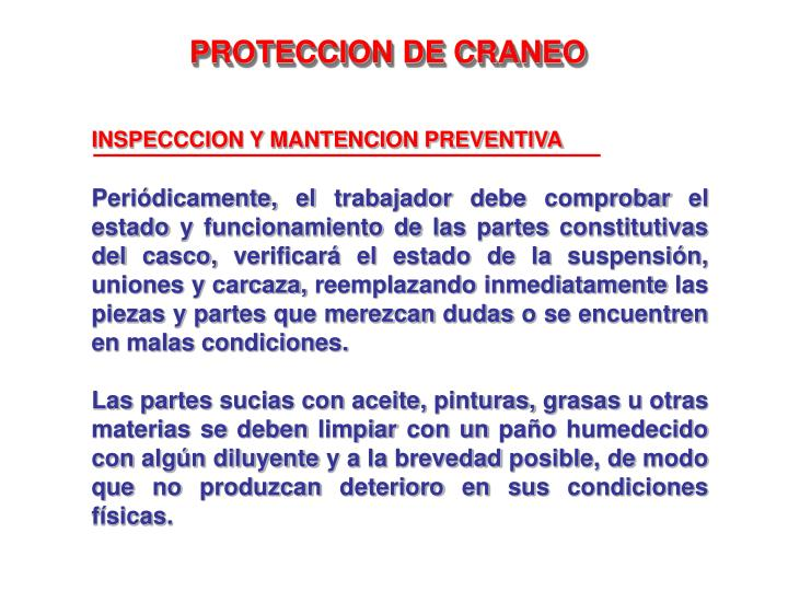 INSPECCCION Y MANTENCION PREVENTIVA