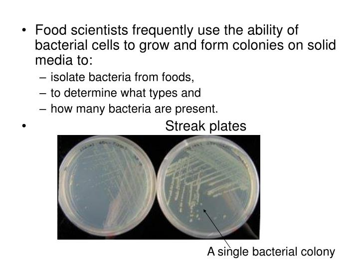 Food scientists frequently use the ability of bacterial cells to grow and form colonies on solid media to: