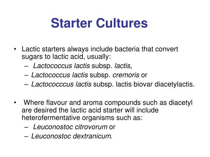 Starter Cultures