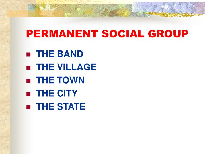 PERMANENT SOCIAL GROUP