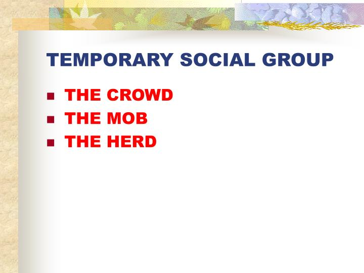 TEMPORARY SOCIAL GROUP