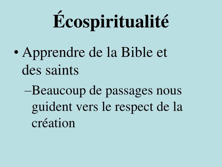 Écospiritualité
