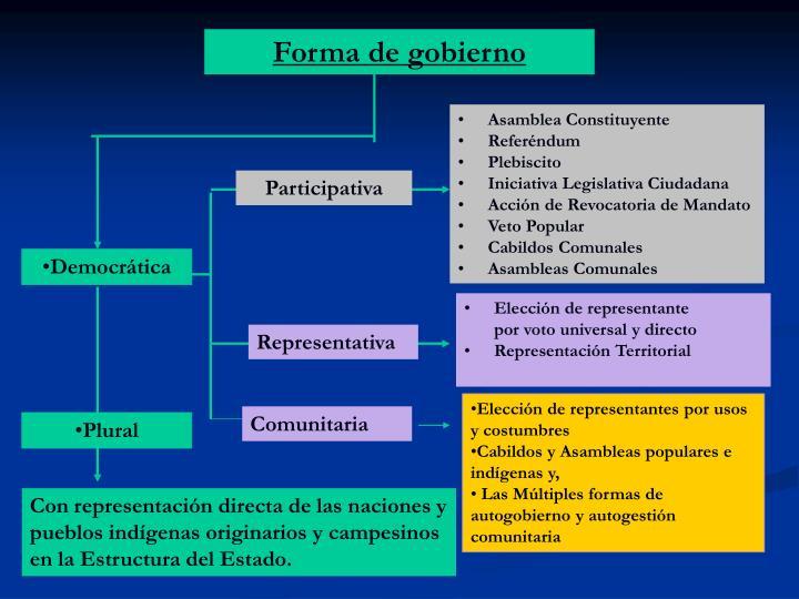 Forma de gobierno