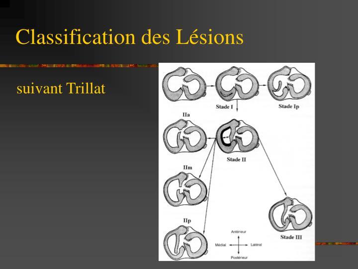 Classification des Lésions