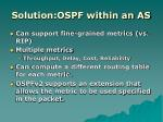 solution ospf within an as