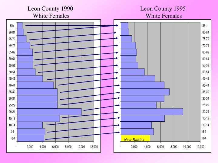 Leon County 1990