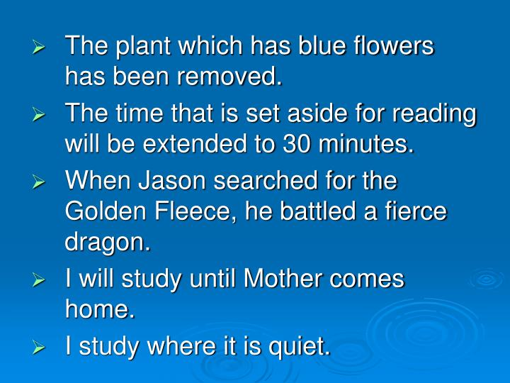 The plant which has blue flowers has been removed.