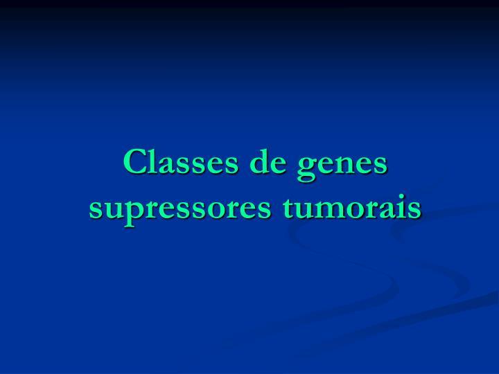 Classes de