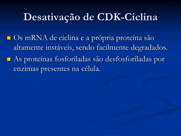 Desativação de CDK-Ciclina