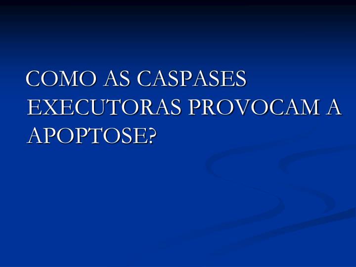 COMO AS CASPASES EXECUTORAS PROVOCAM A APOPTOSE?