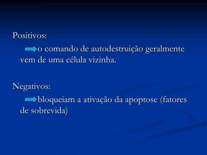Positivos:
