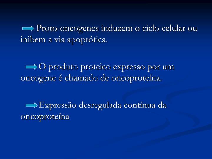 Proto-oncogenes induzem o ciclo celular ou inibem a via apoptótica.