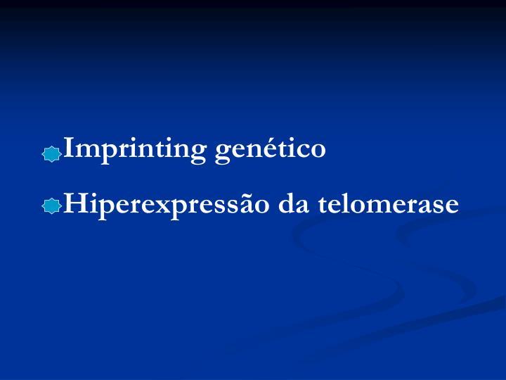 Imprinting genético