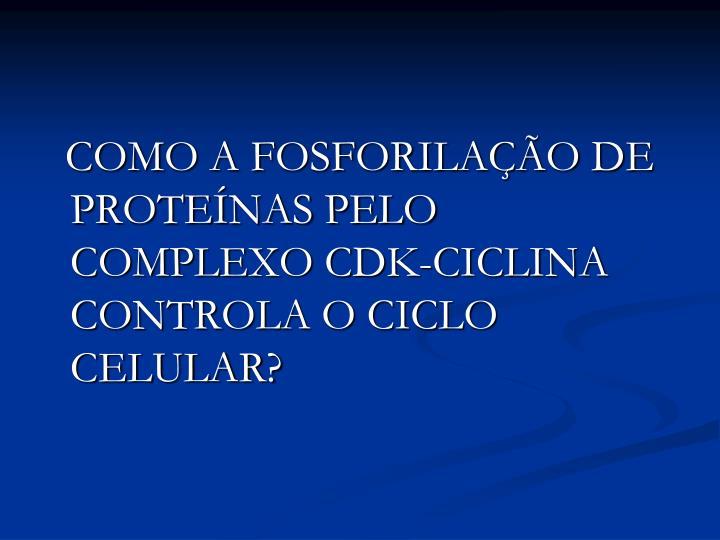 COMO A FOSFORILAÇÃO DE PROTEÍNAS PELO COMPLEXO CDK-CICLINA CONTROLA O CICLO CELULAR?