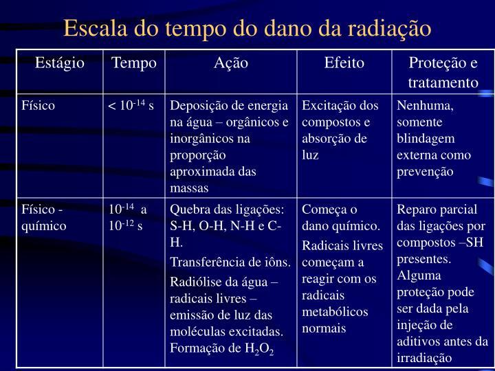 Escala do tempo do dano da radiação