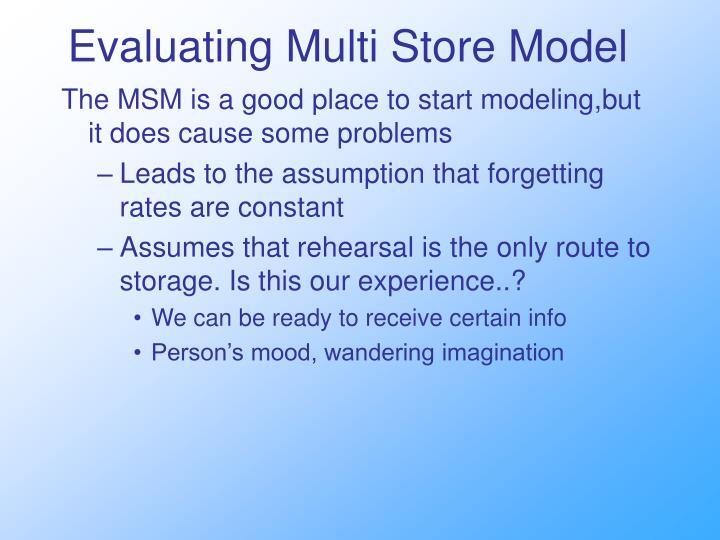 Evaluating Multi Store Model