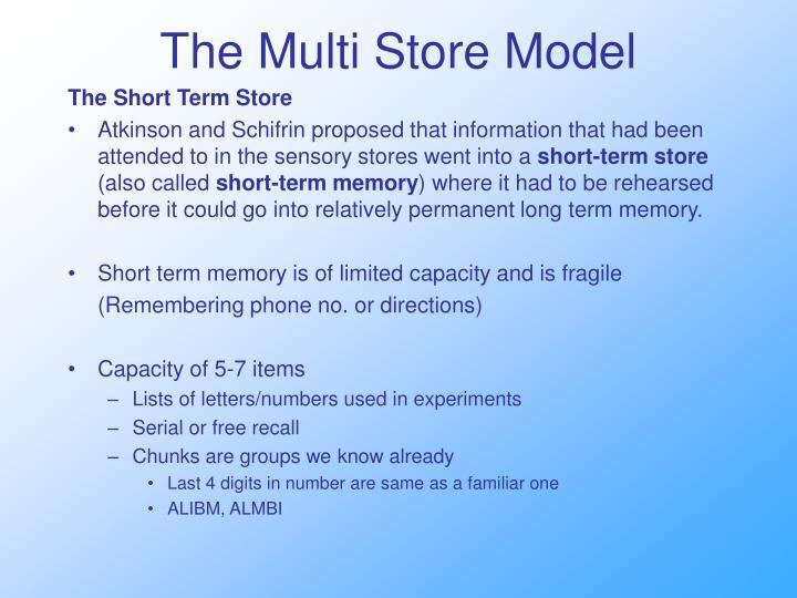 The Multi Store Model