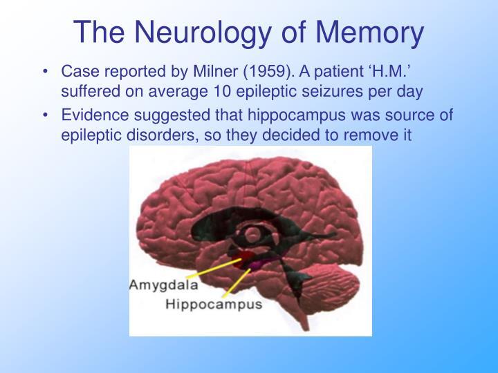 The Neurology of Memory