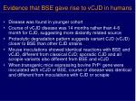 evidence that bse gave rise to vcjd in humans