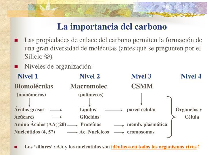 La importancia del carbono
