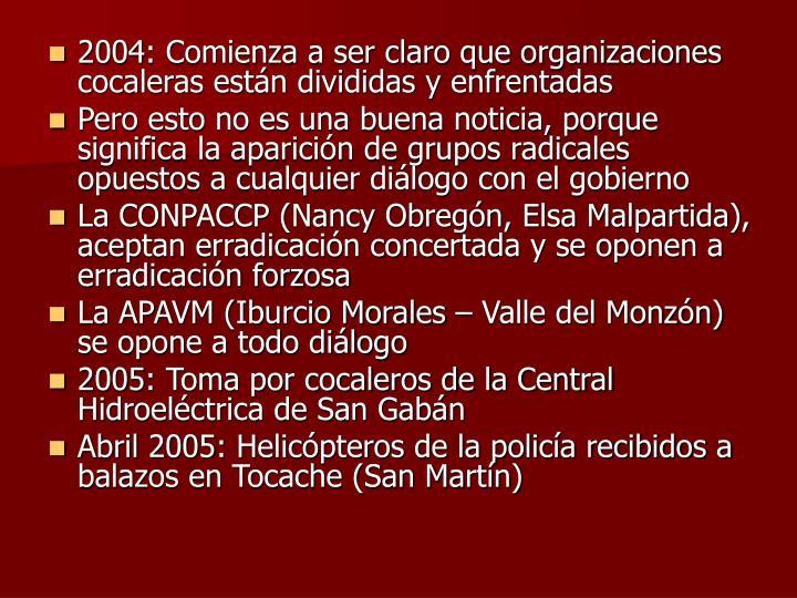 2004: Comienza a ser claro que organizaciones cocaleras están divididas y enfrentadas