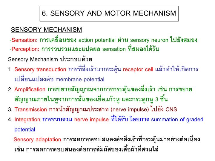 6. SENSORY AND MOTOR MECHANISM