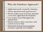 why the database approach