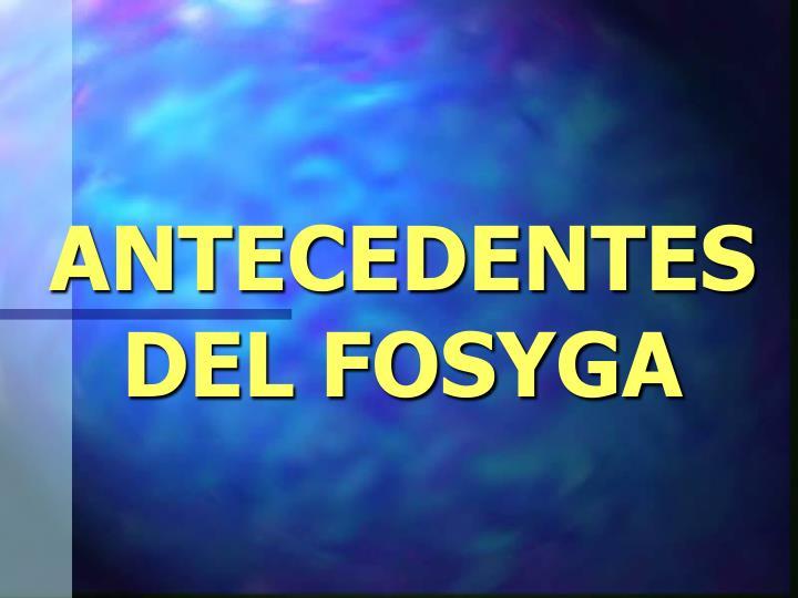 ANTECEDENTES DEL FOSYGA