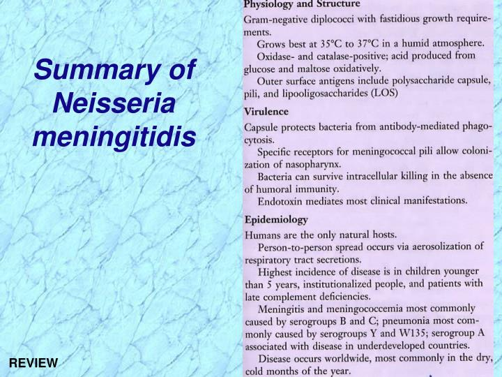 Summary of      Neisseria meningitidis